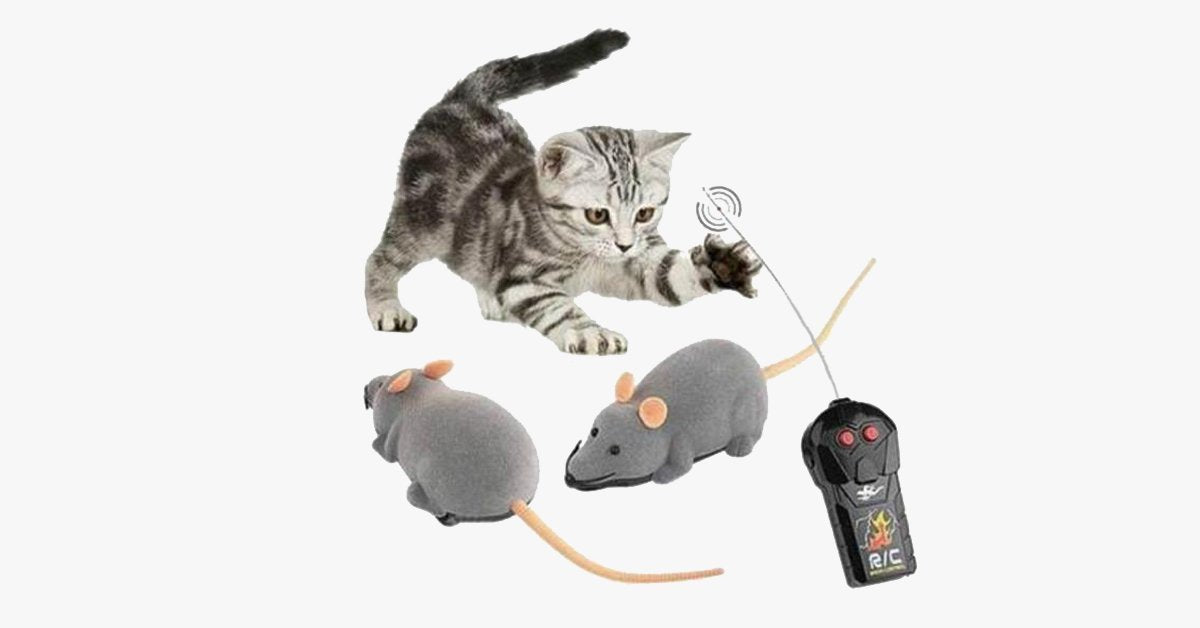 Electronic RC Rat Mouse Toy for Pet Cat - FREE SHIP DEALS