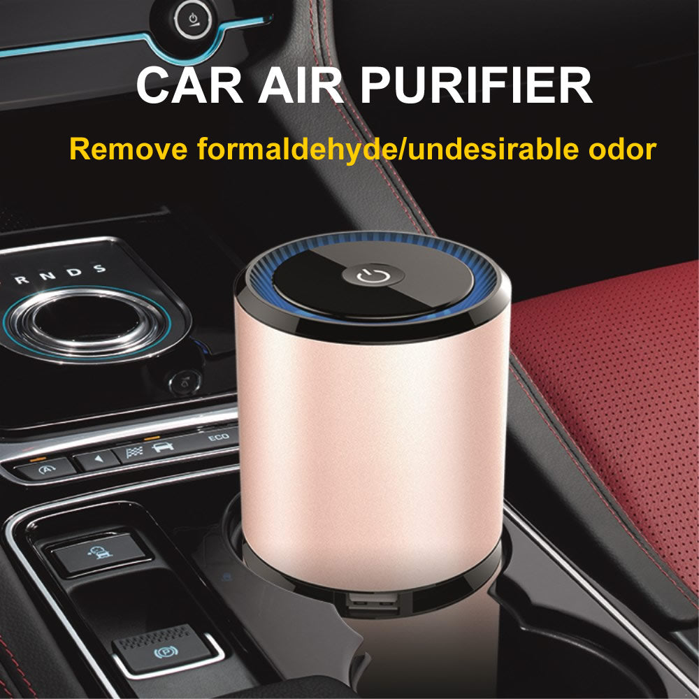 Car air purifier cabin ionizer