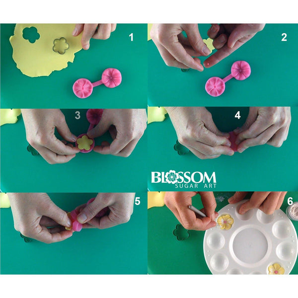 Blossom Cutter & Mould Set - Blossom Sugar Art cake_decorating_mold craft_mold icing_flowers