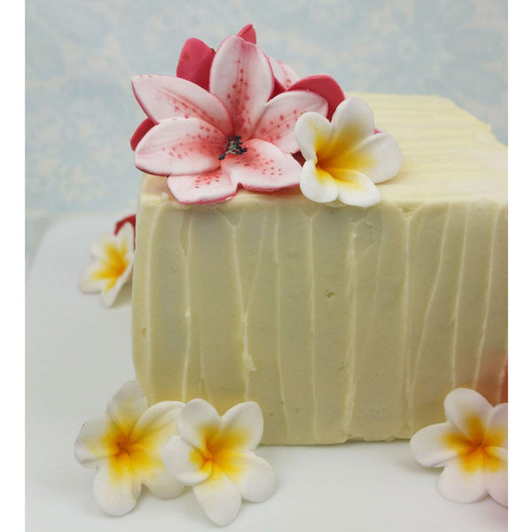 Frangipani Cutter & Mould Set - Blossom Sugar Art cake_decorating_mold craft_mold icing_flowers
