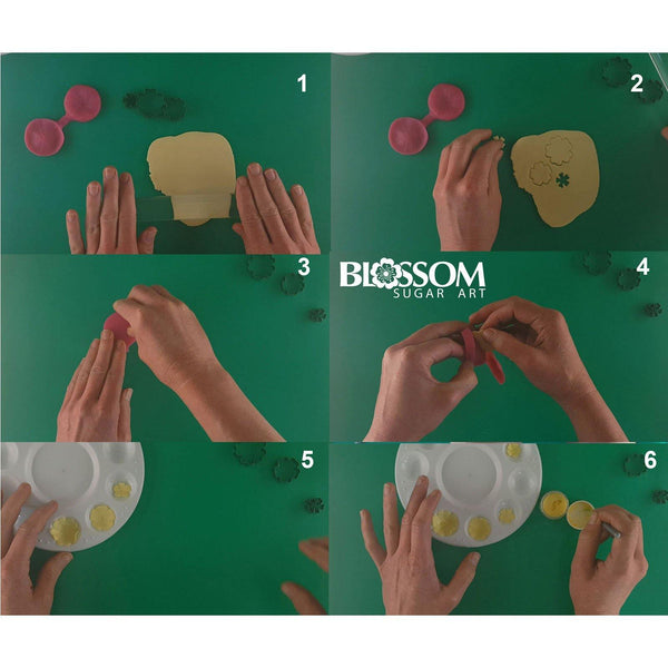 Primrose Multi Set - Blossom Sugar Art cake_decorating_mold craft_mold icing_flowers