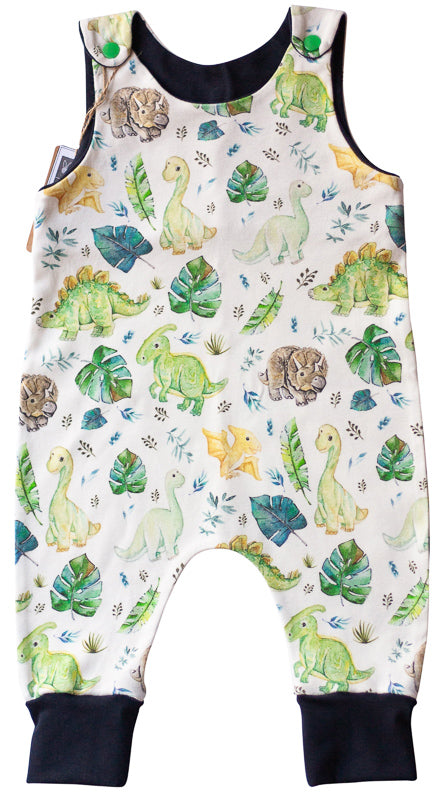 Organic Baby Boy Clothes - Dino Baby Romper