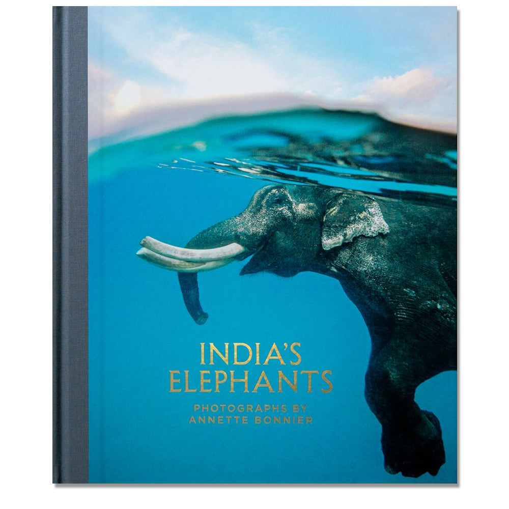 Annette Bonnier: India's Elephants, 2014 - Signed