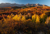 Leica Photo Adventure: Colorado Fall Foliage | Sep 27 - Oct 3, 2021