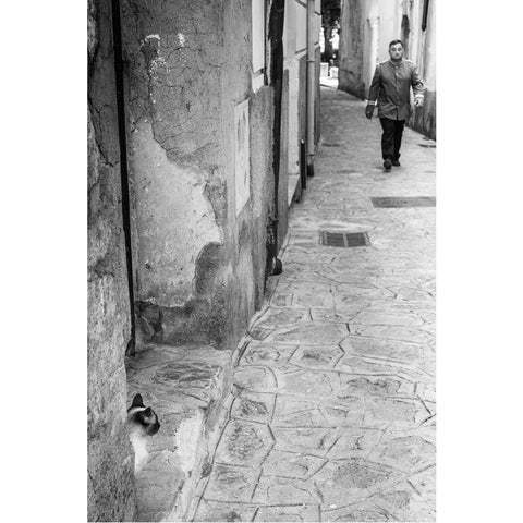 Louis Jay - Signed Archival Print - Ravello, Italy (60)