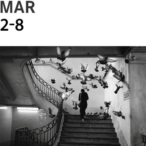 Lisbon, Portugal Street Photography Workshop with Rui Palha | March 2 - 8, 2020