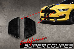 GT350 Radiator Opening Molding Carbon Fiber Ford Mustang 2015-2018