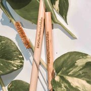 Bamboo drinking Straws with coconut husk pipe cleaner