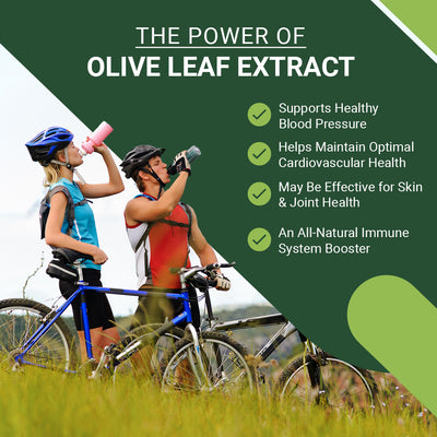 East Park Olive Leaf Extract (OLE) Super Strength d-Lenolate 500mg | 18% or More Oleuropein Immune System Booster | 180 Vegetarian Capsules (Non-GMO)