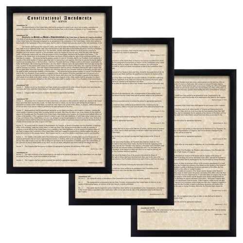 Constitutional Amendments 11-27 Parchment Paper Wood Frame Glass Pane