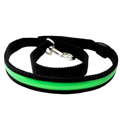 Dogz & Dudez Neon Dog Leash USB Rechargeable 4 Pieces Colours Makes Your Dogs Visible, Safe and Seen (Green) - Dogz & Dudez