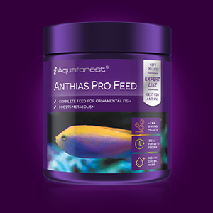 Anthias Pro Feed - freakincorals.com