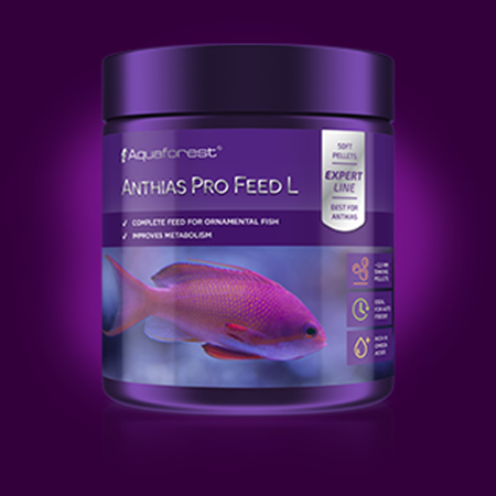 Anthias Pro Feed