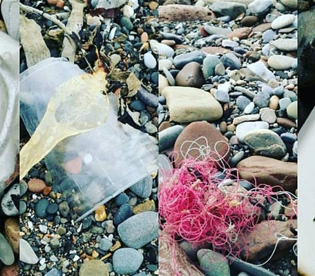Beach Clean with Colourful Coast Partnership / Thu, Feb 27, 2020