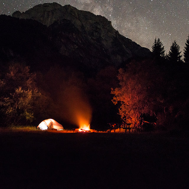 A group of friends wild camping in the woods