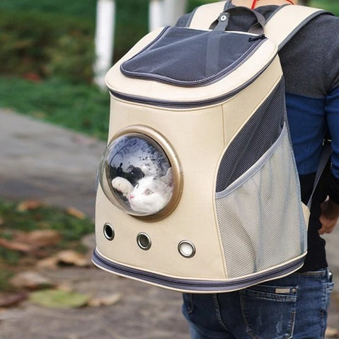 The Explorer Cat Backpack
