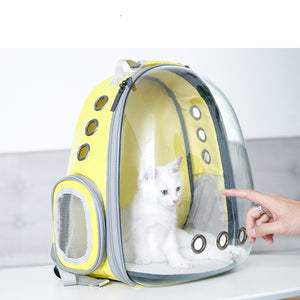 """The Tourist Cat"" Transparent Cats Travel Backpacks"