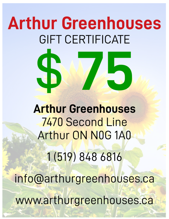 Arthur Greenhouse - $75 Gift Certificate