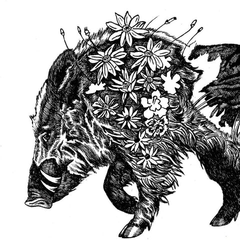 Asian American Zodiac: Earth Boar, Limited Edition Print