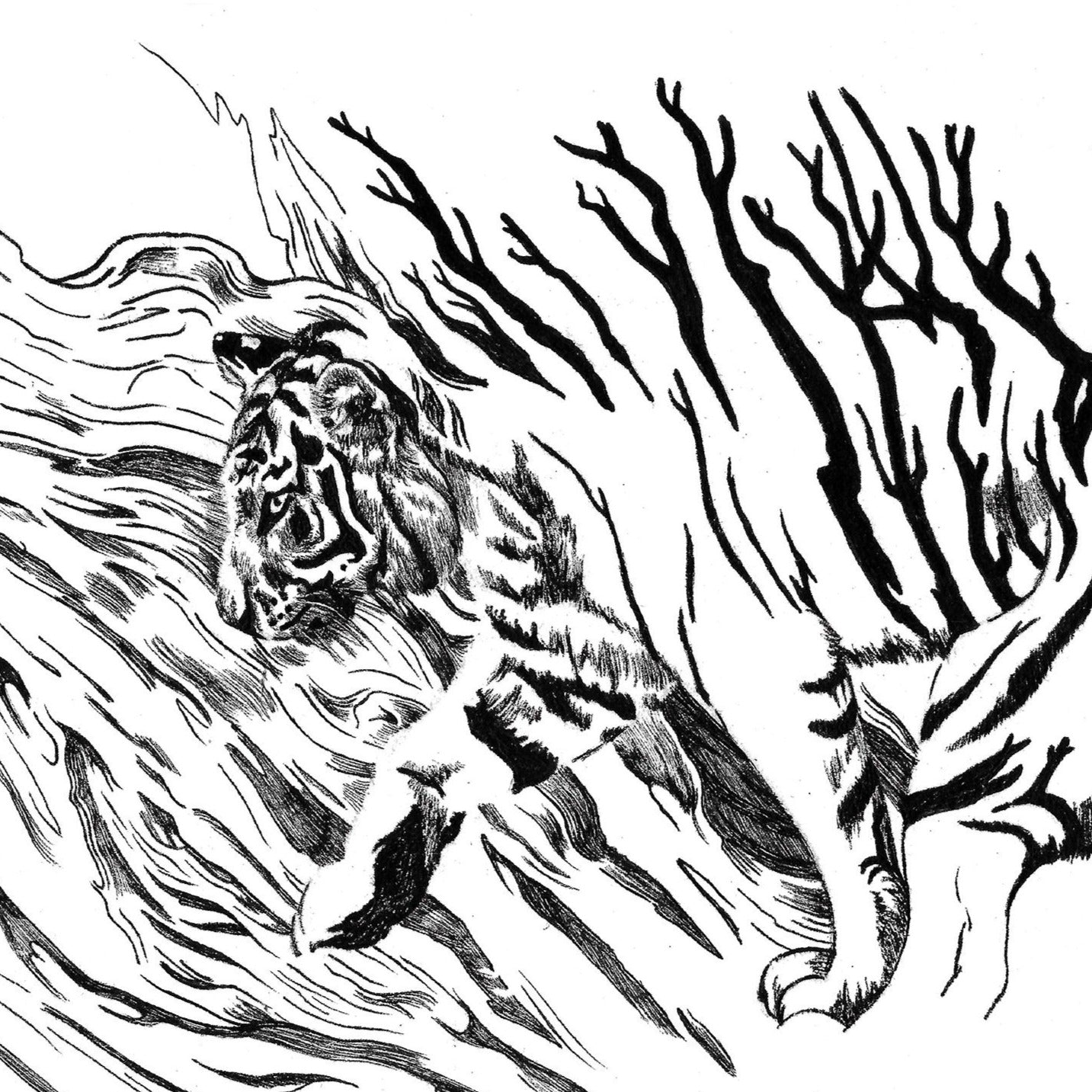 Asian American Zodiac: Wooden Tiger, Limited Edition Print