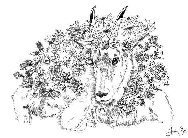 Asian American Zodiac: Earth Goat, Limited Edition Print