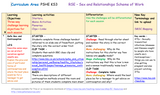 7 Year Pack - Complete Secondary PSHE and RSE KS3, KS4, KS5