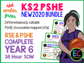 1 Year of Year 6 PSHE + RSE