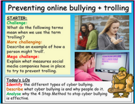 Cyber-bullying, Trolling and Online Safety
