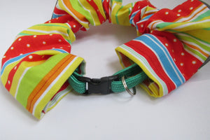 Buying a Breakaway Cat Collar