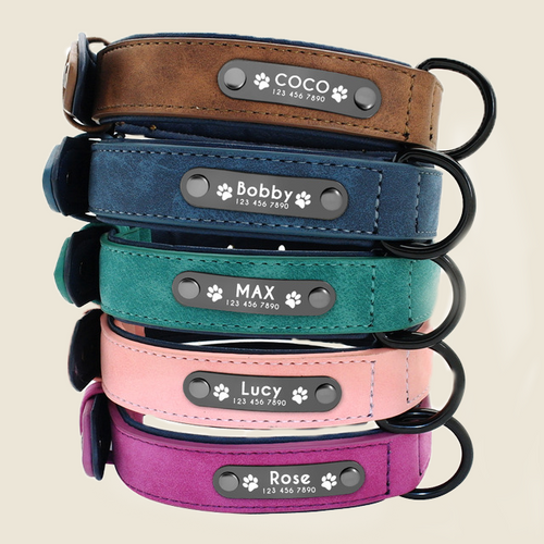 The Love Collar™ Personalized Dog Collar - thelovecollar