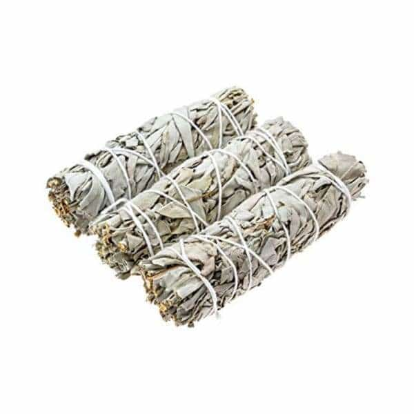 "4"" White Sage - 3ct - BG Sales (4328391573586)"