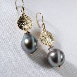 Tahitian Black Pearl with Sand Dollar Charm Earrings in 14kt gold filled