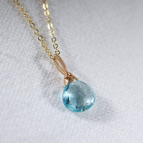 Swiss Blue Topaz Pair Briolette Pendant Necklace in 14 kt Gold-Filled