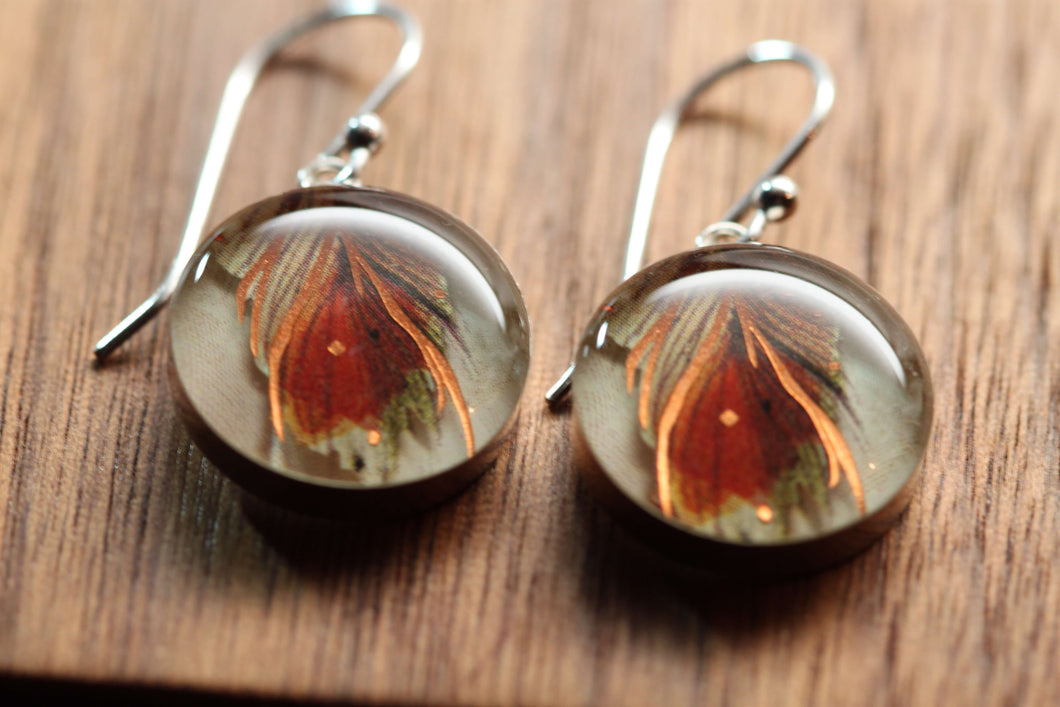 Earthy Feather earrings made from recycled Starbucks gift cards, sterling silver and resin