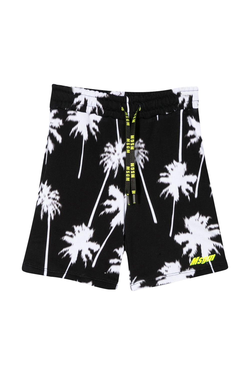 MSGM Black Shorts With Palm Tree Print