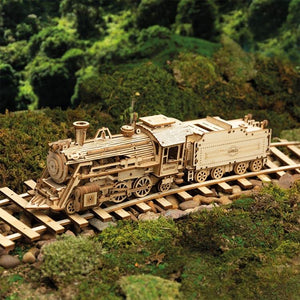 Train with tender (1:80)