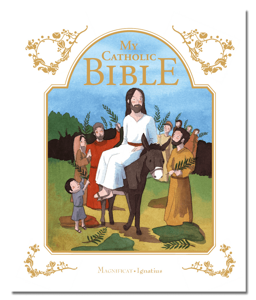 Catholic Gift Bible with Sleeve