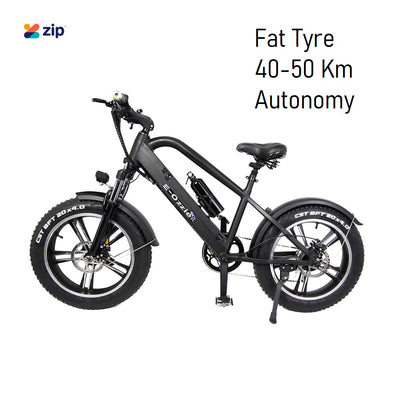 "20"" Electric Bike 