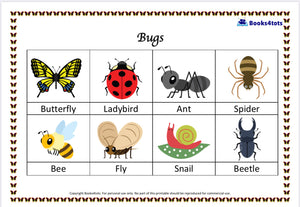 Bugs Read Build Write Activity