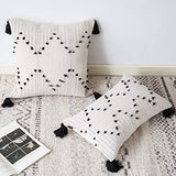 OJIA Farmhouse Black and Cream Square Pillow Cover, 18 x 18 Decorative Throw Pillow Case Tribal Geometric Tufted Tassels Woven Cushion Cover Accent Neutral Collection for Sofa Couch Living Room