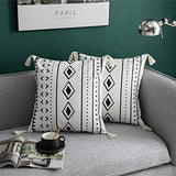 DEZENE Decorative Throw Pillow Covers for Couch Sofa Bed, 2 Pack 100% Cotton Square Pillow-Cases with Tassels, Boho Euro Cushion Covers for Farmhouse, Kids, 18 x 18 Inch Black and White
