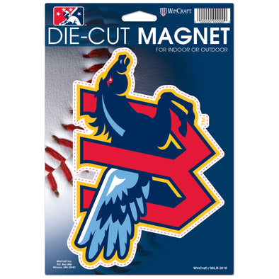 6X9 DIE-CUT CAR MAGNET