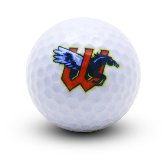 GOLF BALL-PRIMARY
