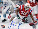 Jerod Mayo New England Patriots Signed Autographed 8x10 Photo