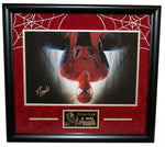 Stan Lee The Amazing Spiderman Signed Autographed 16x20 Photo Framed