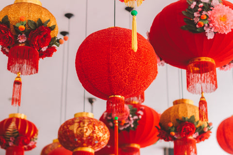 Chinese new year lanterns decoration