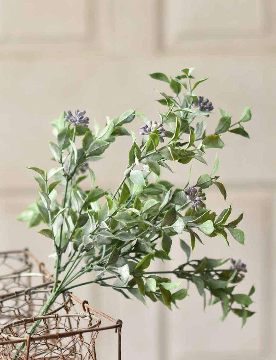 "15"" Bud Beauties Bush - Lavender"