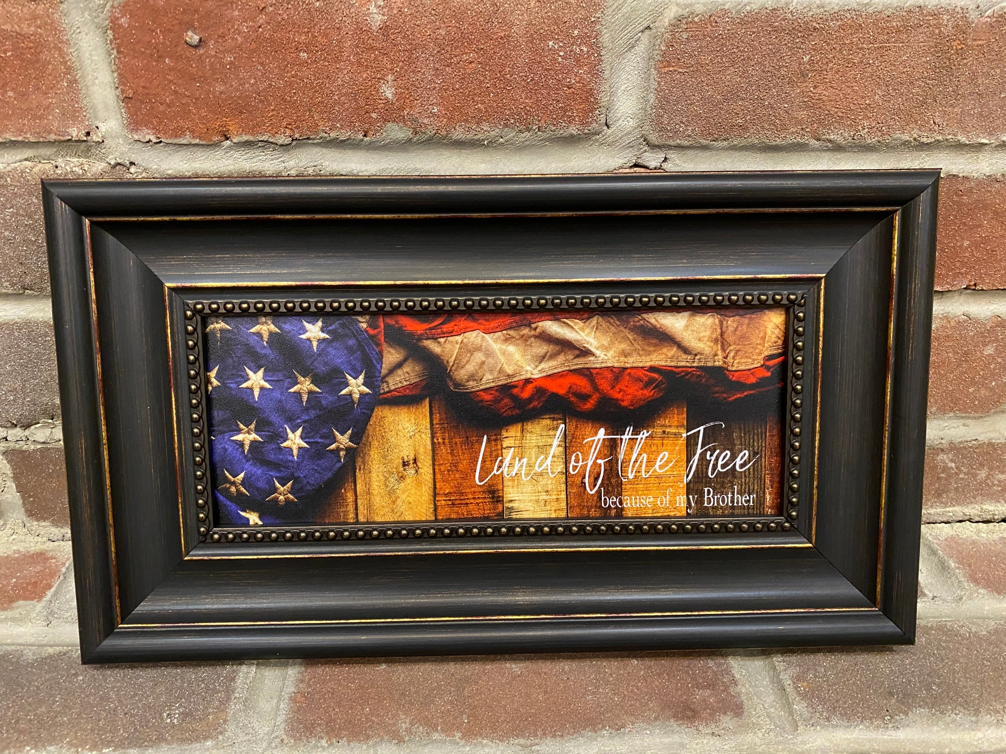Land of the Free...Brother Framed Print