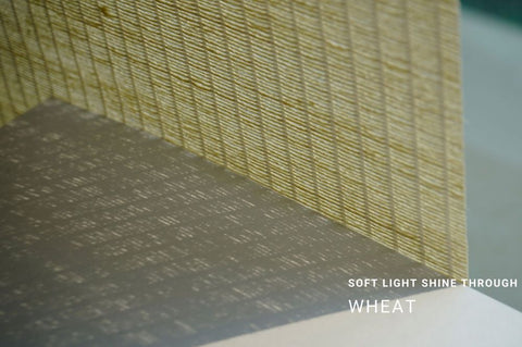soft light shine through-wheat
