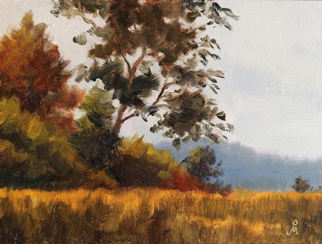 Landscape painting of morning light falling on tall trees and the grassy jungle meadow.